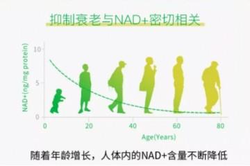 不是智商税!延缓衰老,重获活力,杉宝NMN实力证明